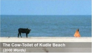 The Cow-Toilet of Kudle Beach